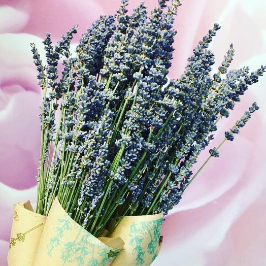 Купить цветы букет лаванды минск