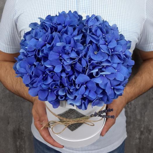 Небесный сапфир: букеты цветов на заказ Flowwow