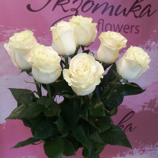7 white roses below the ribbon