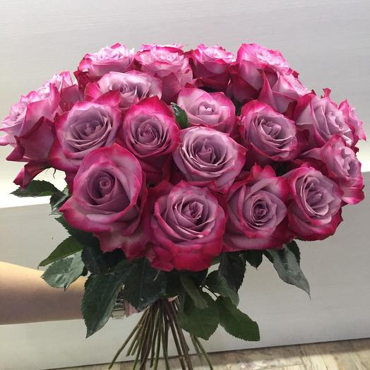 Роза дип перпл