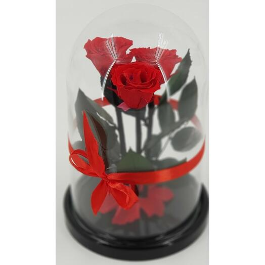 Роза в колбе Трио мини Красная 22*12,5*4 см