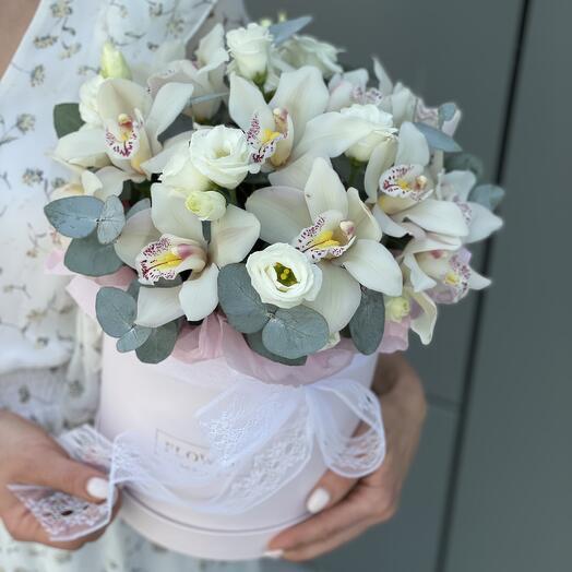 Коробка Волшебная орхидея из цимбидиума и эустомы
