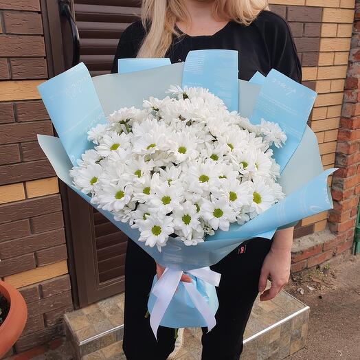 11 ромашковых хризантем