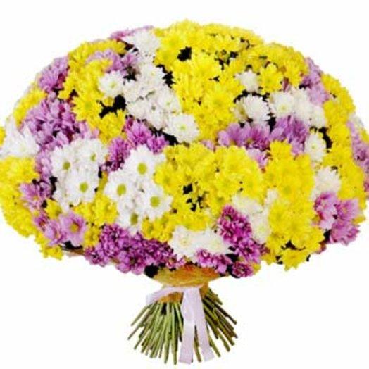 Букет из 51 хризантемы Феерия: букеты цветов на заказ Flowwow