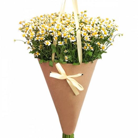 Букет из ромашек Русское поле: букеты цветов на заказ Flowwow