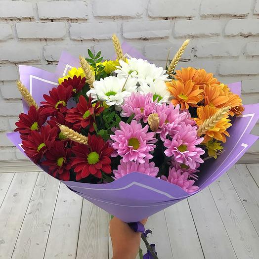 Хризантемовое поле: букеты цветов на заказ Flowwow