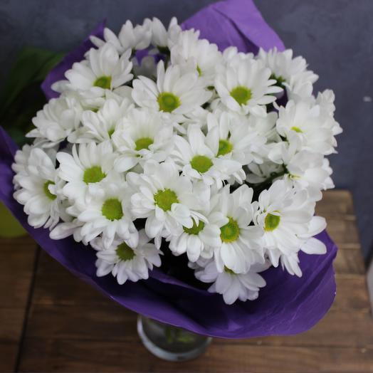 Нежный букет белых хризантем 5 шт