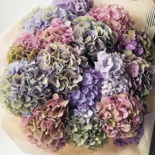 19 гортензий Премиум: букеты цветов на заказ Flowwow
