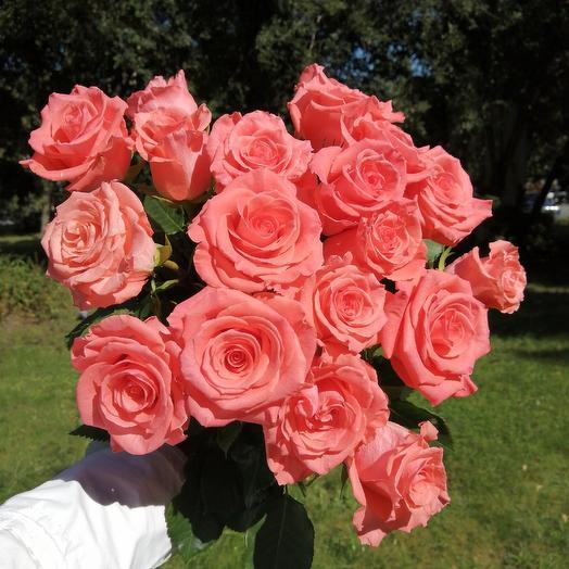 Яркая, свежайшая роза: букеты цветов на заказ Flowwow