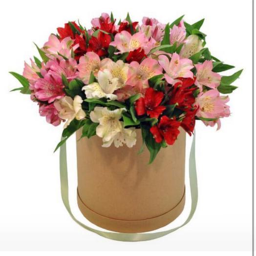 Альстромерия в коробочке: букеты цветов на заказ Flowwow