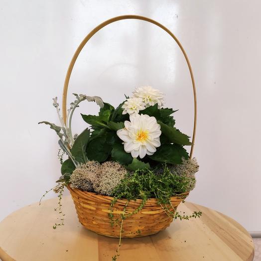 Корзина LITTLE: букеты цветов на заказ Flowwow