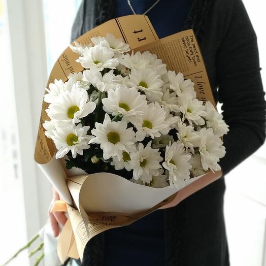 Ромашки🌼 хризантемы кустовые белые