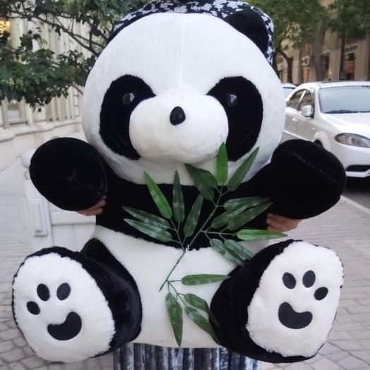 Panda M