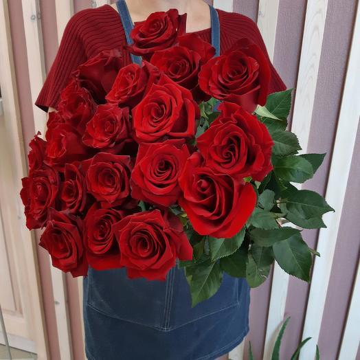 Монобукет из 23 красных роз Эквадор с лентой
