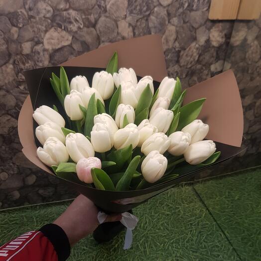 Тюльпан белые