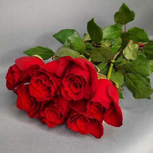 Букет красных роз 7шт