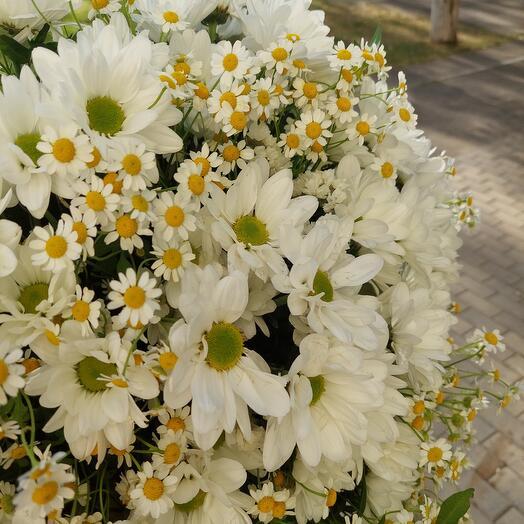 Букет из хризантемы и матрикарии