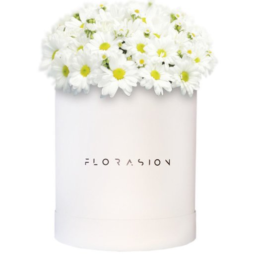 Коробочка Ромашек: букеты цветов на заказ Flowwow
