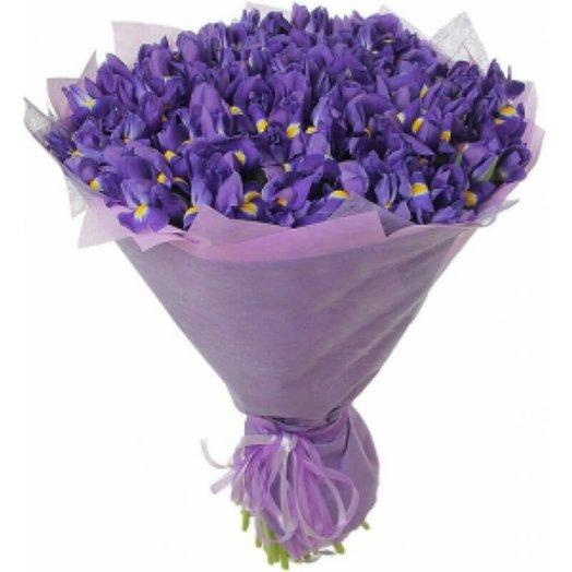 Огромный букет цветов из 101 ириса
