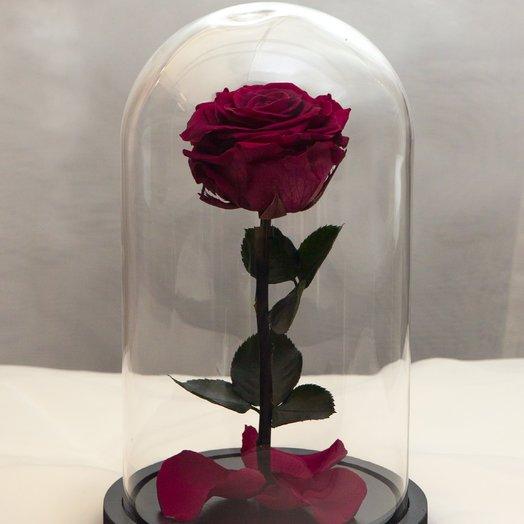 Роза в колбе RozaRose Медиум Фиолетовая: букеты цветов на заказ Flowwow