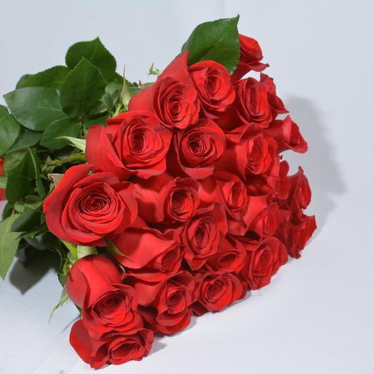 19 роз высотой 60 см (Эквадор): букеты цветов на заказ Flowwow