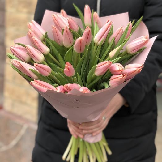 Моно нежно розовые тюльпаны: букеты цветов на заказ Flowwow
