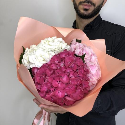 Гортензия 3 шт: букеты цветов на заказ Flowwow