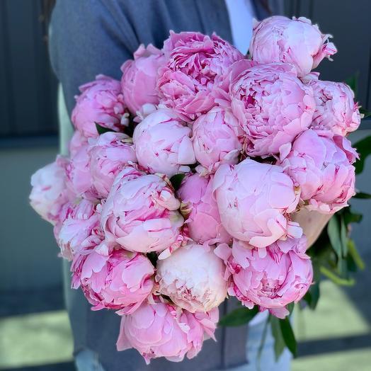 19 Pink Peonies