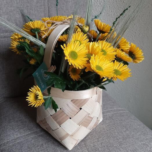 Лукошко с солнечными хризантемами