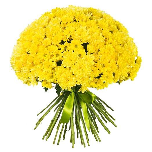 Букет из желтых хризантем Солнечная поляна: букеты цветов на заказ Flowwow