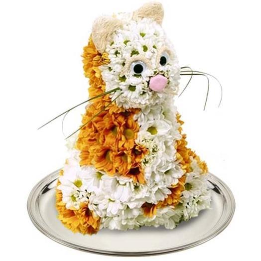 """Игрушка из цветов """"Котик Обормотик"""": букеты цветов на заказ Flowwow"""