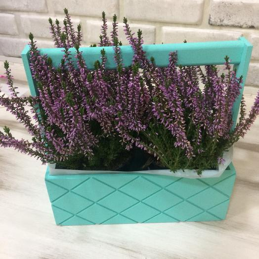Вереск: букеты цветов на заказ Flowwow