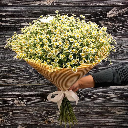 Ромашки Полевые 101 шт: букеты цветов на заказ Flowwow