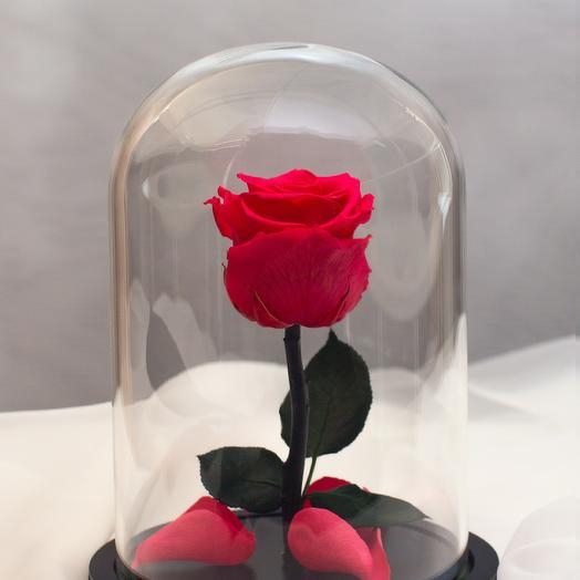 Роза в колбе RozaRose Мини Алая