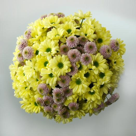 Round bouquet of Daisys