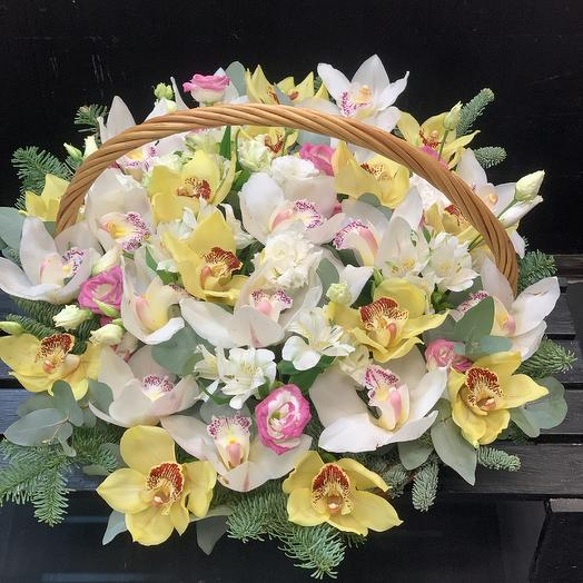 Корзина любимых орхидей: букеты цветов на заказ Flowwow
