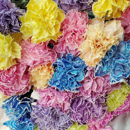 Радужные гвоздики: букеты цветов на заказ Flowwow