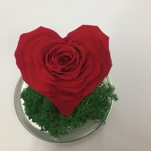 Роза сердце