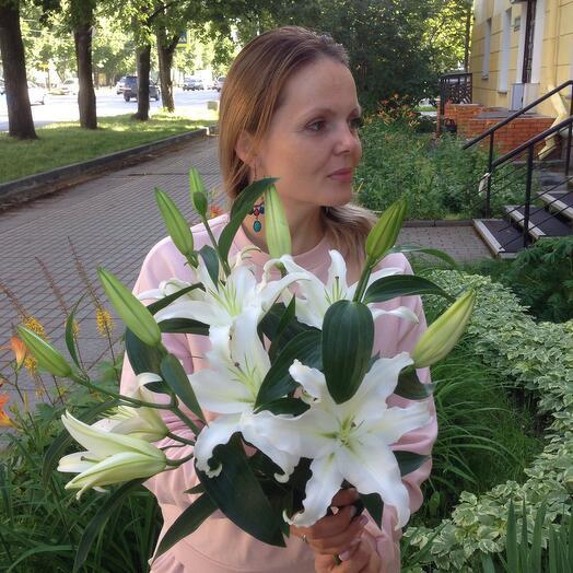 Лилия махровая 3 шт