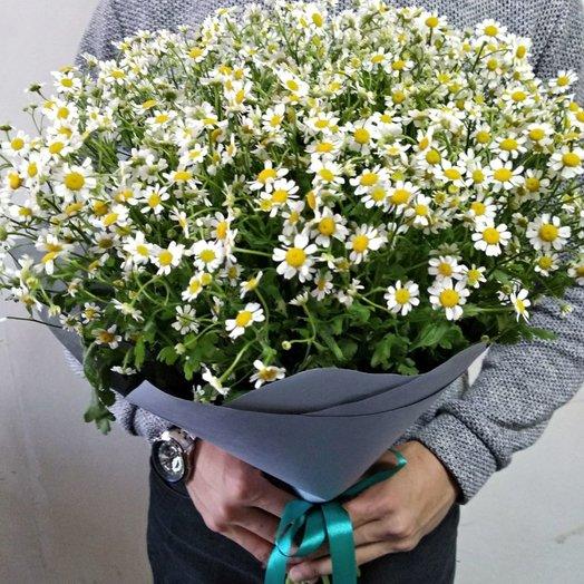 Ромашковый сад: букеты цветов на заказ Flowwow