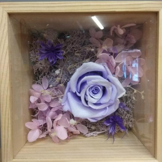 Стабилизированная роза в шкатулке: букеты цветов на заказ Flowwow