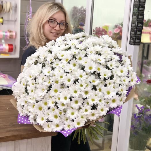Огромный букет ромашковых Хризантем