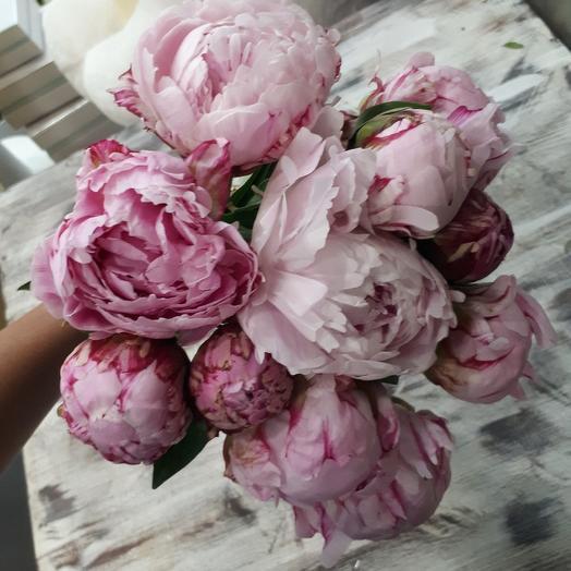 Нежная Сара: букеты цветов на заказ Flowwow