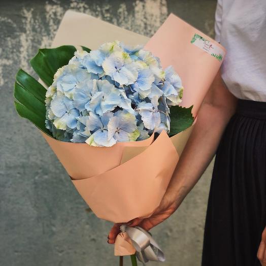 Букет из гортензии и монстеры: букеты цветов на заказ Flowwow