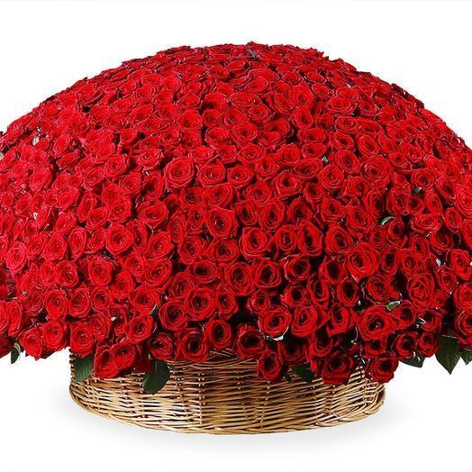 """1001 роза """"Для самой главной в жизни"""": букеты цветов на заказ Flowwow"""