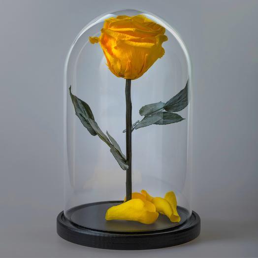 Роза в колбе желтая премиум
