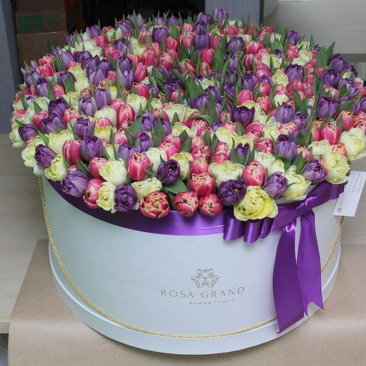XXL из  тюльпанов: букеты цветов на заказ Flowwow