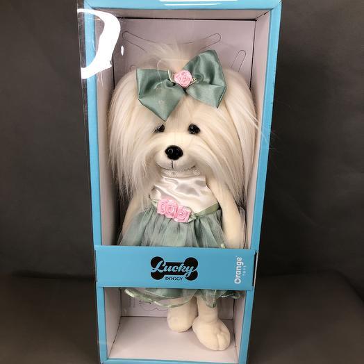 Коллекция Lucky Doggy: букеты цветов на заказ Flowwow