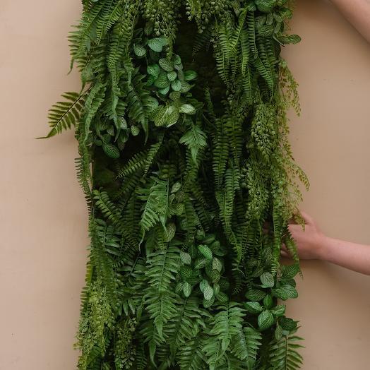 Фитокартина с зеленью