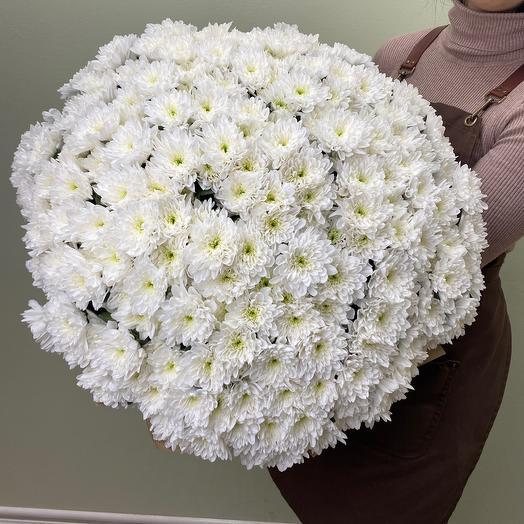 Букет из 35 хризантем